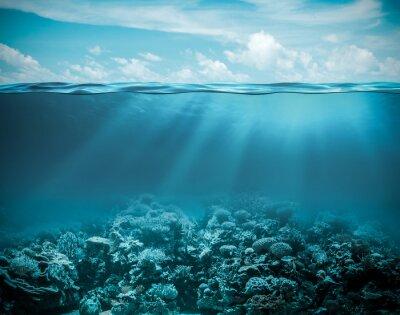 Canvastavlor Hav eller havet undervattens djup natur bakgrund