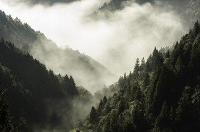 Canvastavlor Höga berg i dimma och moln