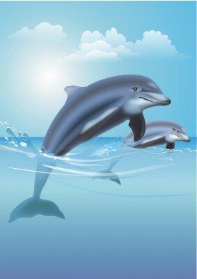 Canvastavlor Hoppning Dolphins illustration