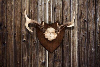 Canvastavlor Horns på en trävägg