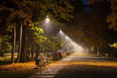Canvastavlor Höstgata i parken på natten i Konstancin Jeziorna, Mazowieckie, Polen