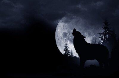 Canvastavlor Howling Wolf Bakgrund