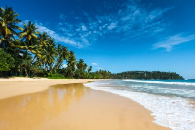Canvastavlor Idyllisk strand. Sri Lanka
