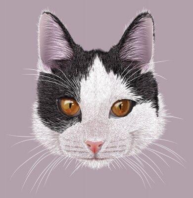 Canvastavlor Illustration Porträtt av inhemska katt. Söt ung tvåfärgad katten med orange ögon.