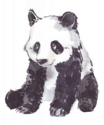Canvastavlor illustration teckning av en panda