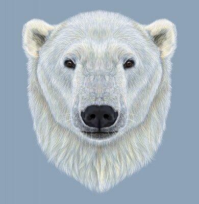 Canvastavlor Illustrerad Porträtt av Polar Bear