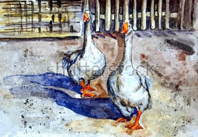 Canvastavlor Inhemsk gäss promenad på gården. Teckning akvarell på papper. Naiv Art. Abstrakt konst. Måla akvarell på papper.