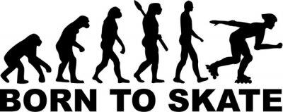 Canvastavlor Inline Evolution