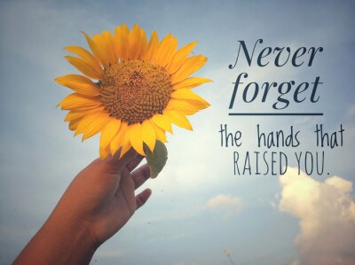 Canvastavlor Inspirational motivational quote - Never forget the hands that raised you. With background of blue sky and beautiful sunflower blossom in hand. Photo concept with nature.
