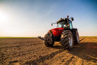 Canvastavlor Jordbrukare gödsla jordbruksmark med kväve, fosfor, kaliumgödsel