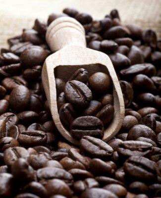 Canvastavlor Kaffebönor