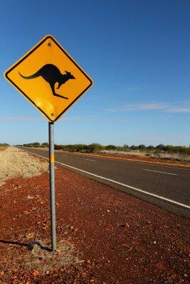 Canvastavlor Kangaroo Logga in South Australia