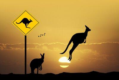 Canvastavlor Känguru sign försiktighet