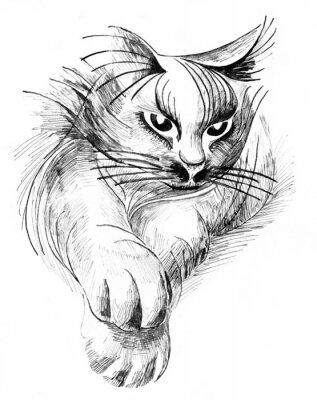 Canvastavlor katt