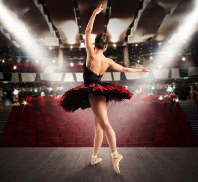 Canvastavlor Klassisk dansare på teatern