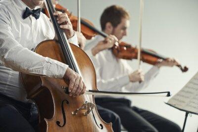 Canvastavlor Klassisk musik konsert