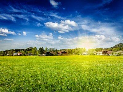 Canvastavlor Landsbygd äng fält med sol och blå himmel