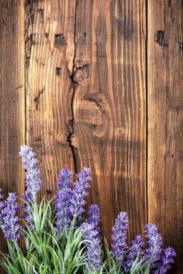 Canvastavlor lavendel-