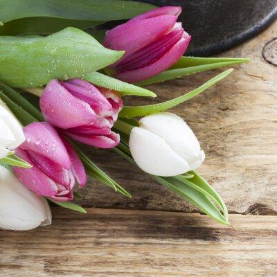 Canvastavlor lila tulpan våren koncept på vintage bricka och träbord