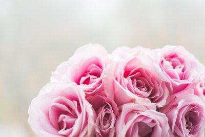 Canvastavlor Ljus rosa rosor bakgrund