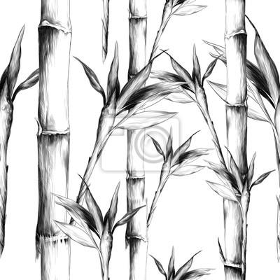 Canvastavlor löv grenar stam bambu mönster blommor konsistens ram sömlösa skiss vektor grafik monokrom svart och vitt ritning