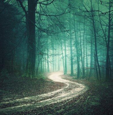 Canvastavlor Magiska färg höst skogsväg. Dreamy bllue grönfärgad dimmig landsbygd skogsträd med slingrande väg bakgrund. Fantasy färgade skogsmark. Färgfilter effekt används.