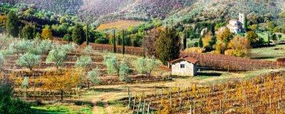 Canvastavlor Magiska höstlandskapet i Toscana landsbygden. Vine regionen i Italien