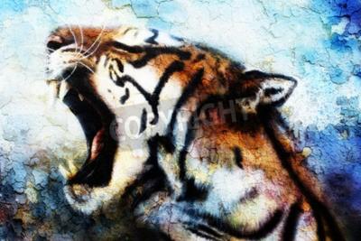 Canvastavlor målning Sumatran Tiger Roaring