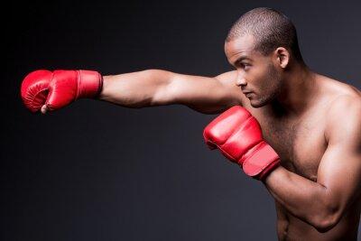 Canvastavlor Man boxning.
