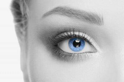 Canvastavlor mänskliga ögat