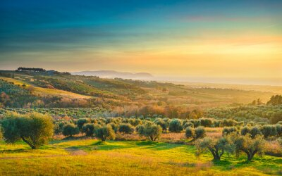 Canvastavlor Maremma sunset panorama. Countryside, sea and Elba on horizon. San Vincenzo, Tuscany, Italy.