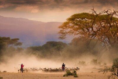 Canvastavlor Masai herdar med stam og getter