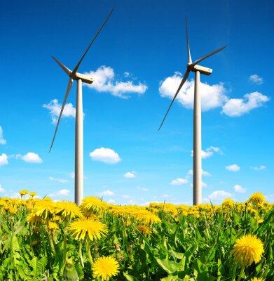 Canvastavlor Maskrosfält med vindkraftverk. Ren energi.