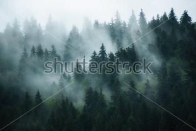 Canvastavlor Misty landscape with fir forest in hipster vintage retro style