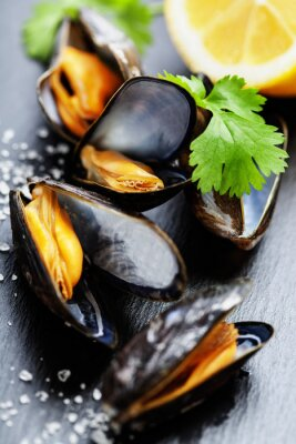 Canvastavlor musslor