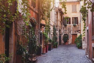 Canvastavlor mysig gata i Rom, Italien