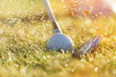 Canvastavlor Närbild av golfboll.