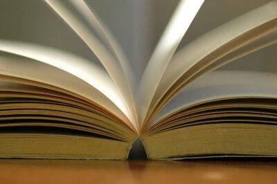 Canvastavlor Närbild öppnade boken
