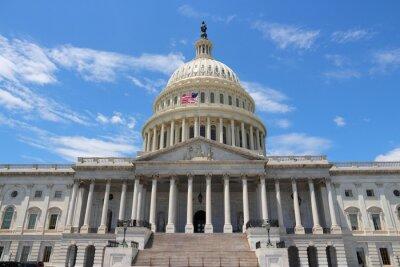Canvastavlor National Capitol, Washington DC
