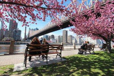 Canvastavlor New York / Roosevelt Island