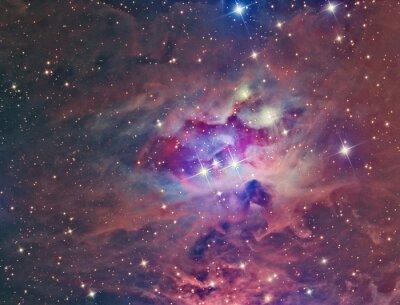 Canvastavlor NGC 1973 Running Man Nebula avbildas med ett teleskop och en vetenskaplig CCD-kamera