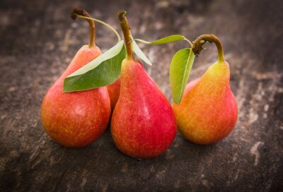 Canvastavlor Nya organiska päron