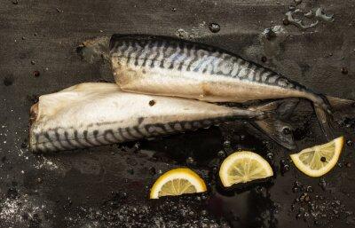 Canvastavlor Nyklippt makrill skivor av citron, salt, peppar på en svart bakgrund