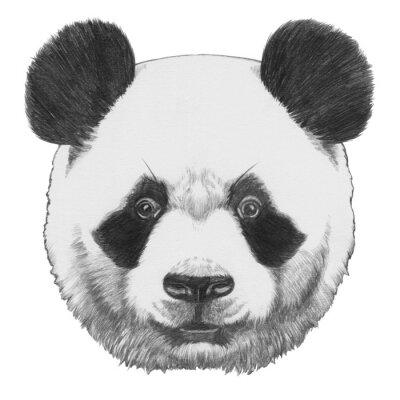 Canvastavlor Original- dra av Panda. Isolerad på vit bakgrund