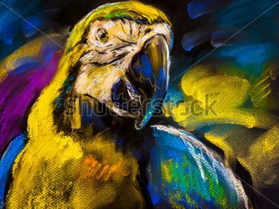 Canvastavlor Original pastellmålning på kartong. Modern målning av en vacker papegoja