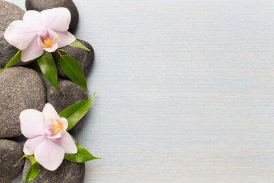 Canvastavlor Orkide.