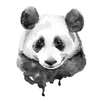Canvastavlor Panda.Black och vitt. Isolerat