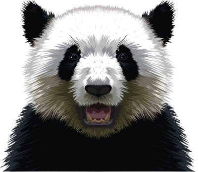 Canvastavlor PANDA - Buste