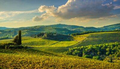 Canvastavlor Panzano in Chianti vineyard and panorama at sunset. Tuscany, Italy
