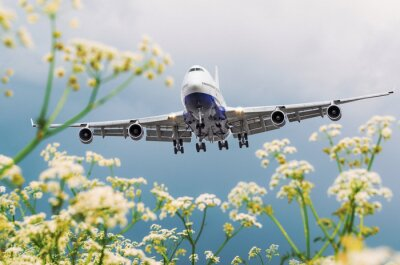 Canvastavlor Passagerarfarkoster flyger över blomfält på flygplatsen.